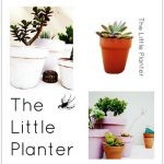 The Little Planter